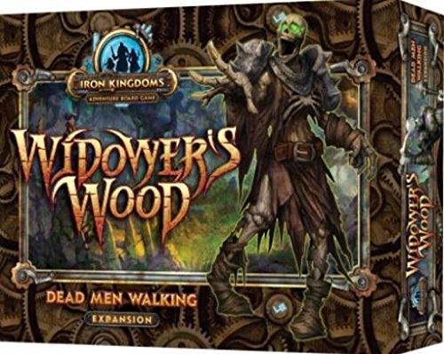 Review Iron Kingdoms Adventure: Widower`s