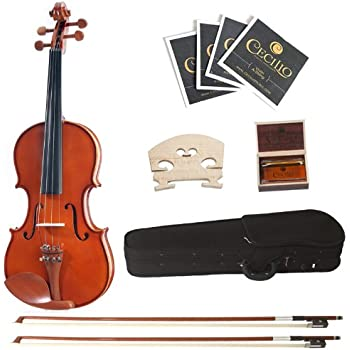 Cecilio 4/4 CVN-200 Rosewood Fitted Solid Wood Violin