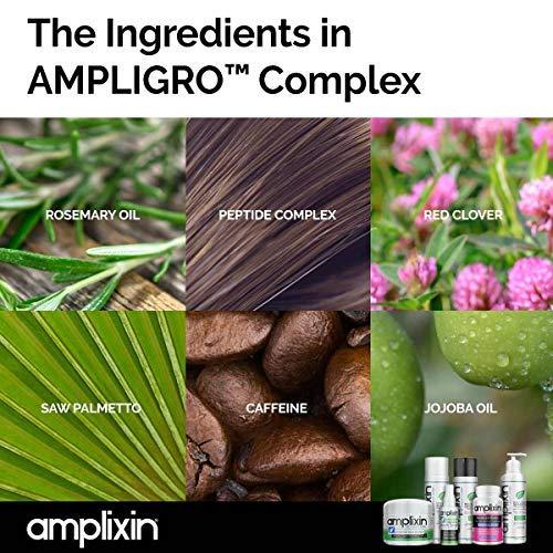Amplixin Scalp Therapy Shampoo - Dry, Itchy Scalp Treatment With Tea Tree Oil For Men & Women - Anti Dandruff, Psoriasis & Seborrheic Dermatitis Prevention Formula - Sulfate & Paraben Free, 8Oz