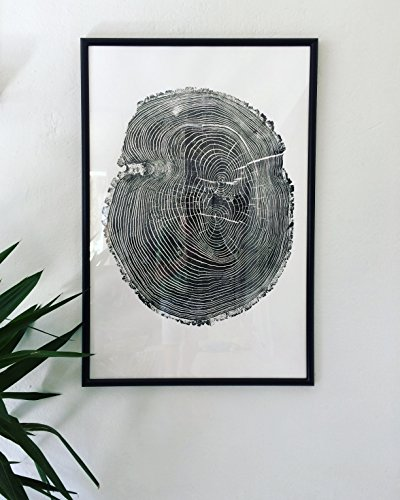 Large Ash Tree Original Woodblock Tree Ring Print