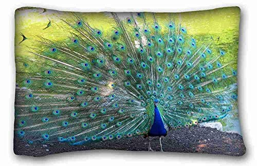 Opus Queen Bed - gwaweka Generic Personalized (Animal Peacock Opus Bird Peacock Animal Highres) Pillowcase Cushion Cover Design Standard Size 18x18 inches One Sides Suitable for X-Long Twin-Bed PC-Bluish-34229