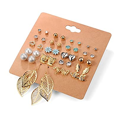Aganippe Women's Girl's Stainless Steel Assorted Multiple Stud Earring 20 Style Sets,Hypoallergenic