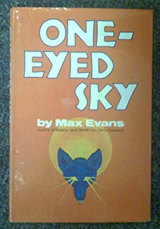 book cover of One-Eyed Sky