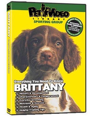 (BRITTANY SPANIEL DVD! Includes Bonus Dog & Puppy Training)
