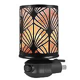 Syntus Himalayan Salt Lamp Natural Pink Salt Rock Lamps Metal Basket Lamp Glow Hand Carved Night Lights Wall Light with Sculptured Iron Basket, 2 Bulbs for Lighting, Gingko
