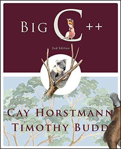 Big C++, 2nd Edition