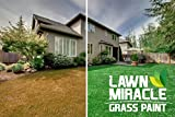 Lawn Miracle Lawn / Grass Paint (Green), 128