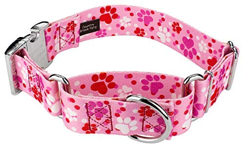 Country Brook Petz | 1 1/2 Inch Puppy Love Martingale with Premium Buckle Dog Collar - Extra Large