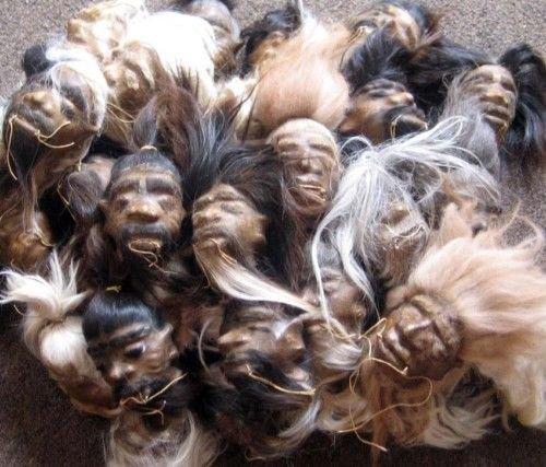 Shrunken Head (Shrunken Head Real Leather Rawhide Replica 5 Inch Size no skull)