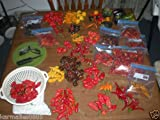 BHUT JOLOKIA + 21 OTHER HOT AND RARE PEPPER VARIETIES