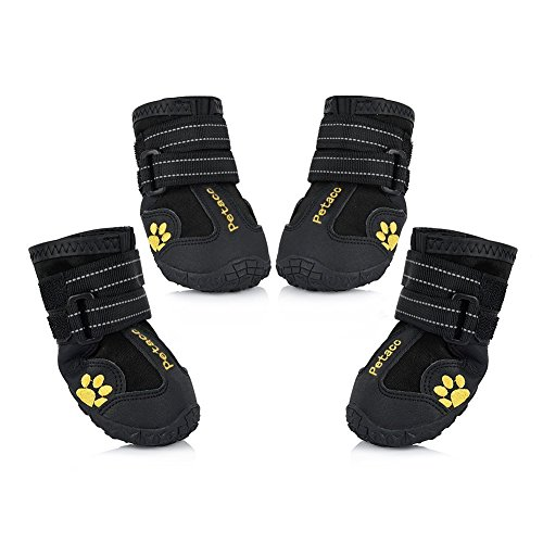 Petacc Boots Water Resistant Labrador product image