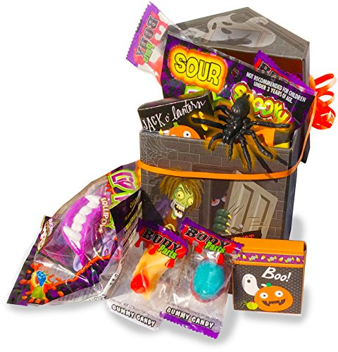 Smores Family Costume (Trick-Or-Treat Halloween Haunted House 14 Piece Gift Box with Ghoulish Candies, Eyeball Gumball, Toy, and Stickers)