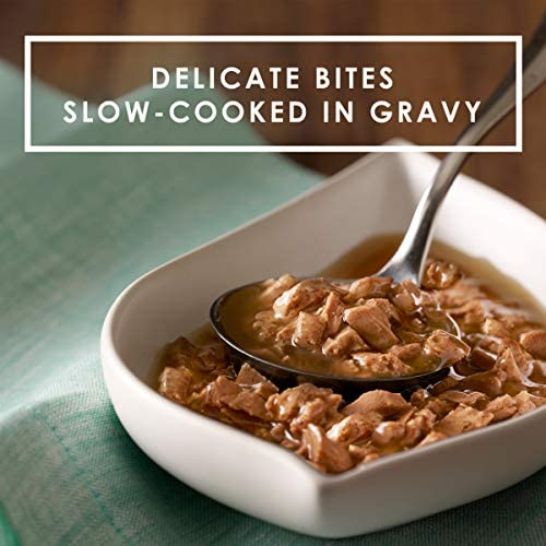 Purina Fancy Feast Gravy Lovers Adult Canned Wet Cat Food 4