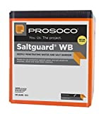 Saltguard WB Penetrating Concrete & Masonry Sealer, Silane-Siloxane, (1) 5-gal