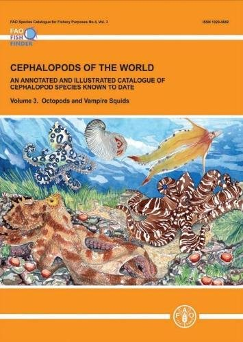 Cephalopods Of The World. An Annotated And Illustrated Catalogue Of Cephalopod Species Known To Date: Octopods And Vampire Squids (Volume 3)