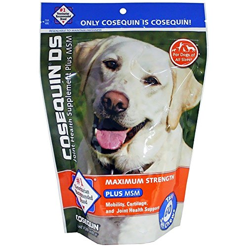 Cosequin Maximum Strength with MSM Plus Omega-3's Soft Chews (60 Count)