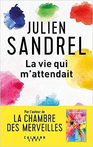 Ma vie qui m'attendait de Julien Sandrel 517rpUjeHSL._SX312_BO1,204,203,200_