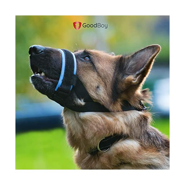 Gentle Muzzle Guard for Dogs - Prevents Biting and Unwanted Chewing Safely Secure Comfort Fit - Soft Neoprene Padding - No More Chafing - Included Training Guide Helps Build Bonds with Pet 7