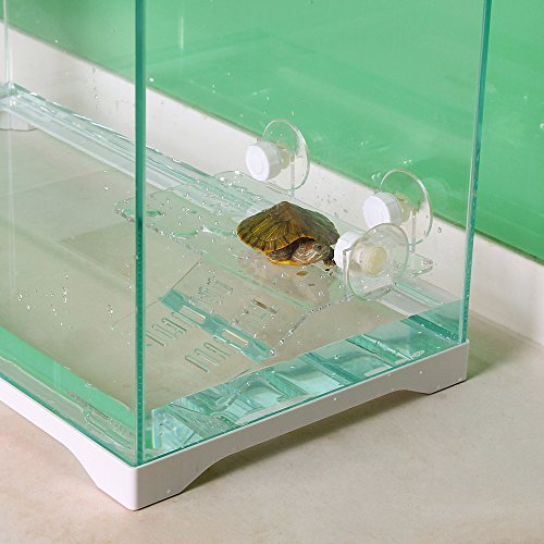 petamo-flat-roof-for-turtlefloating-island-in-the-jar-of-turtleclear-climbing-table-for-baskingflat-