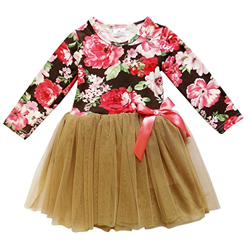 So Sydney Little Girls Long Sleeve Chiffon Tulle Princess Dress with Tutu Skirt (4T (M), Fall Floral)