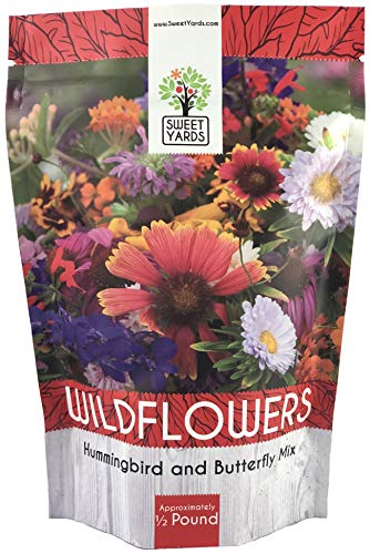 (Bulk Wildflower Seeds Butterfly and Humming Bird Mix - 1/2 Pound Bag - Over 60,000 Open Pollinated Annual and Perennial Seeds)