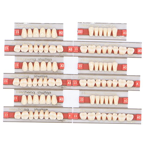 Wecando 84 Pcs Dental Synthetic Resin Tooth Denture