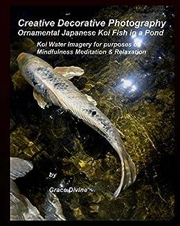 Creative decorative photography ornamental japanese koi for Japanese ornamental fish