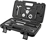 Birzman Essential Tool Kit: 13-piece Set with Carrying Case