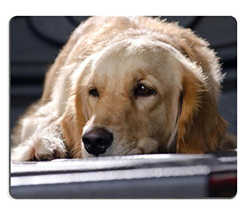 msd-customized-natural-rubber-mouse-pad-personalized-custom-picture-golden-retriever-27319794