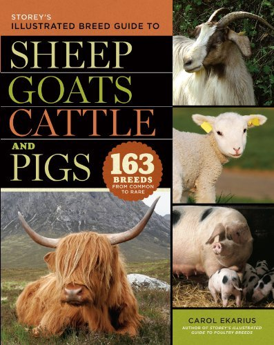 Storey's Illustrated Breed Guide to Sheep, Goats, Cattle and Pigs: 163 Breeds from Common to Rare by Carol Ekarius (2008-09-10) (Goat Breeds Sheep)