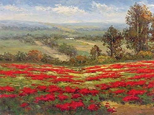 Buyartforless Poppy Vista II by Hulsey 16x20 Art Print Poster Landscape Poppies Field Tuscan Vista (Poppies Landscape)