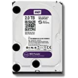 Western Digital WD Purple HDD Interno 2000 GB, SATA III, 6000 Mbit/s, 5400 rpm, 64 MB, 3.50 Pollici