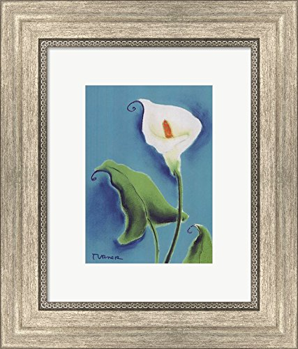 Calla Lily with Blue by Dona Turner Framed Art Print Wall Picture, Silver Scoop Frame, 11 x 13 inches ()
