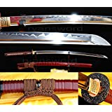 Amazon.com: Dragon Sword Ryu Hayabusas Katana in Ninja ...