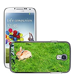 Hot Style Cell Phone PC Hard Case Cover // M00116940 Hare Rabbit Animal Cute Fur Meadow // Samsung Galaxy S4 S IV SIV i9500