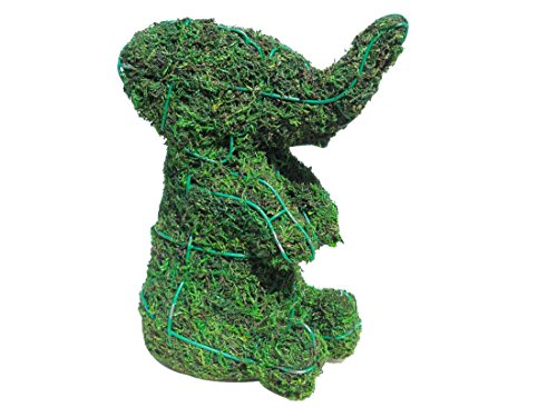 (SK Moss topiary Gift Express Sitting 8 inches high Topiary Frame)