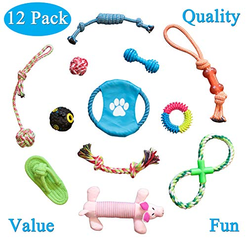 - TristarPets Dog Chew Toys Durable Puppy Teething Set - Dental Cleaning Product - Fights Gum Disease - Safe - Variety (12 Pack) - Fun Activity for All Breeds - Prevents Boredom and Relieves Stress