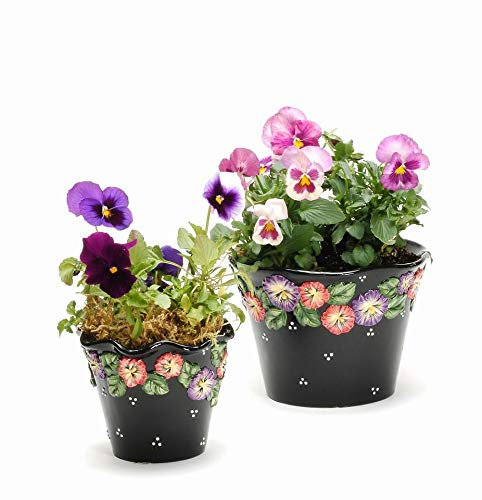 Fine Ceramic Hand Painted Black Pansy Madness Pansy Flowers Design Planters Pot Holder (Set of 2) (Photo Props Flowers NOT Included), 8