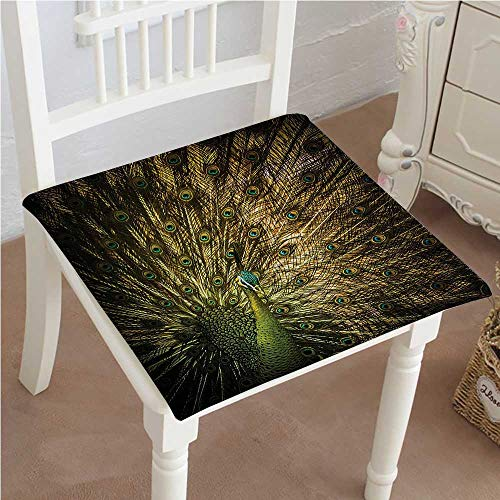 Peacock Pad Feather Gold - Dining Chair Pad Cushion Portrait of Male Peacock with Feathers Out Picture in Dark Colors Modern Home Fashions Indoor/Outdoor Bistro Chair Cushion 26