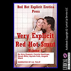 Very Explicit Red Hot Smut, Book 1