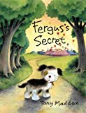 img - for Fergus's Secret book / textbook / text book