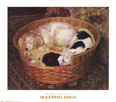 Sleeping Dogs by Diana Calvert - Art Print Poster