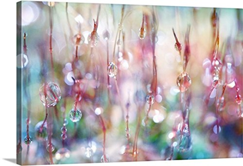 Sharon Johnstone Premium Thick-Wrap Canvas Wall Art Print