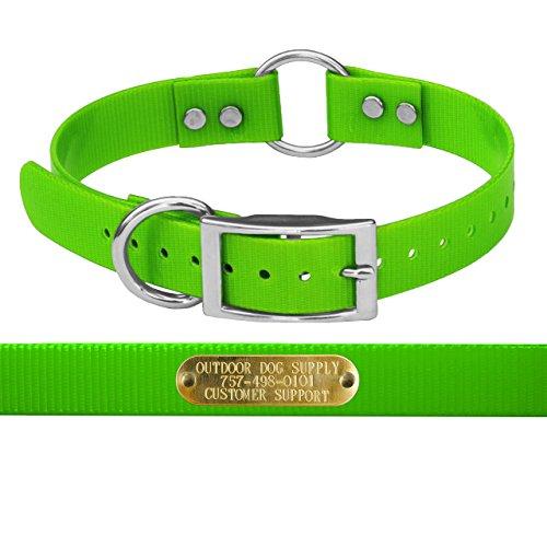 Outdoor Dog Supplys Center Collar