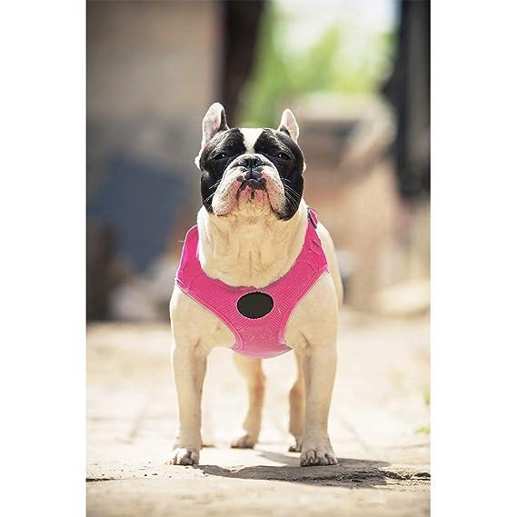 El Confort y Control del arnés del Perro del Perro casero Chaleco ...