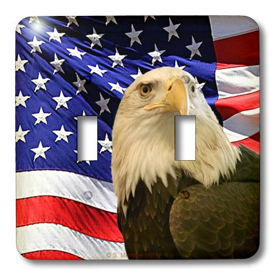 3dRose LLC lsp_21650_2 Bald Eagle And American Flag, for sale  Delivered anywhere in USA