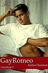 GayRomeo (Lovestorys 2)