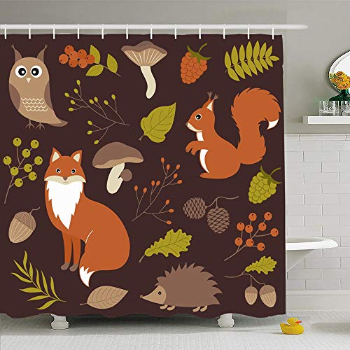 Ahawoso Shower Curtain Set with Hooks 72x78 Woodland Animals Acorn Bird Isolated Green Squirrel Set Cute Wildlife Nature Brown Leaf Owl Animal Waterproof Polyester Fabric Bath Decor for Bathroom (Bath Bird Woodland Squirrel)
