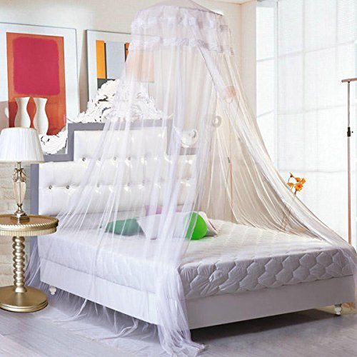 Bonk Earnings - Elegant Lace Hanging Bedding Mosquito Net Dome Princess Bed Canopy Netting - Hump Profit Seam Web Sack Intercourse Take-Home Eff Income Love Laid Reticulation - 1PCs by Unknown (Image #4)