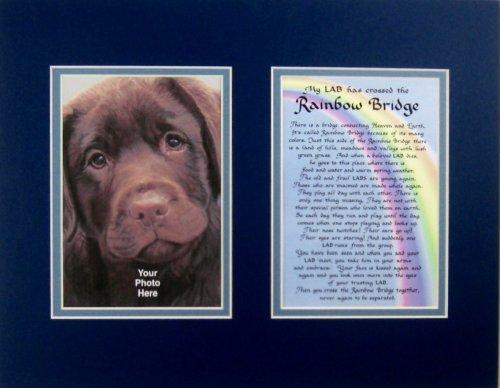 Lab Rainbow Bridge Bereavement Memorial Keepsake Wall Hanging Gift Made in the USA